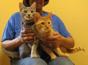 Siblings, Penny and Felix